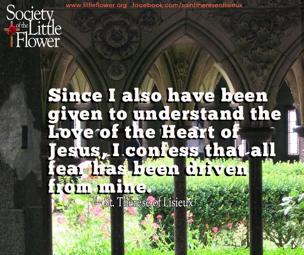 Since I also have been given to understand the Love of the Heart of Jesus, I confess that all fear has been driven from mine. -St. Therese of Lisieux
